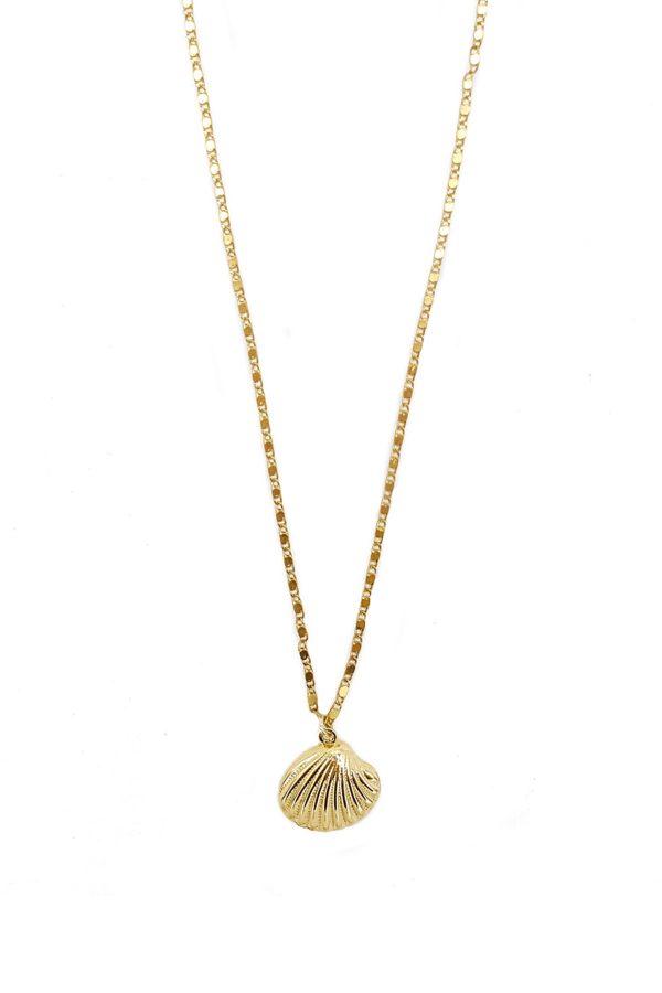 collar dorado con concha